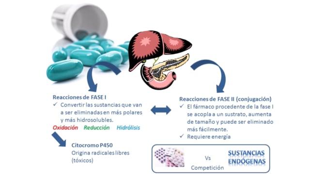 Recetas poder del metabolismo